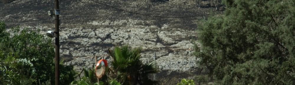 The Fire In Kibbutz Amiad