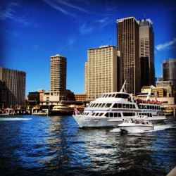 Photo of the Sydney harbor at Sydney Circular Quay