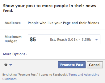 Facebook Promote A Post Screen