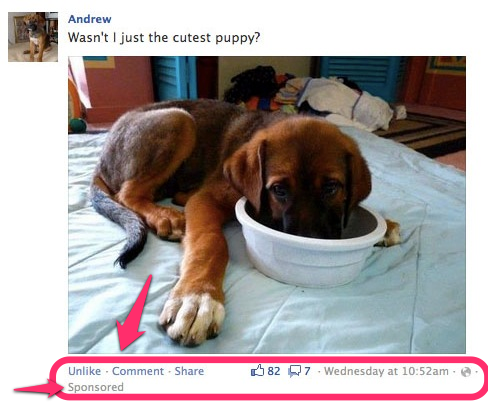 How Does A Facebook Promoted Post Look Like